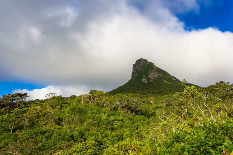 Le Pouce mountain. Mauritius. Beauty In Nature Cloud - Sky Day Grass Green Color Landscape Le Pouce Mauritius Mauritius Island  Mountain Nature No People Outdoors Scenics Sky Tranquil Scene Tranquility