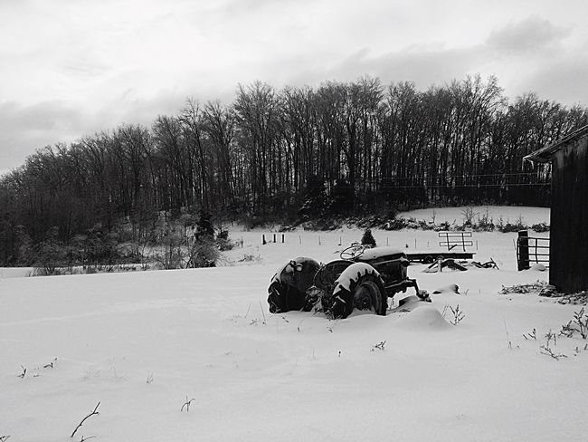 Snowstorm2016 Blackandwhite Fortheloveofblackandwhite Iced Over Nature_collection Snowday Nature Mothernature Let It Snow Snow EyeEm Nature Lover Eyemnaturelover Snowy Beautiful Day Beautiful Tractor Field Trees Landscapes With WhiteWall Here Belongs To Me