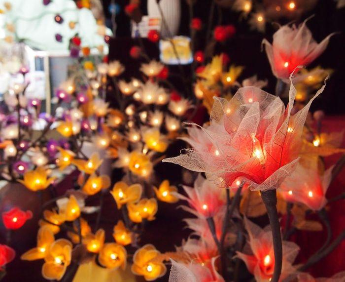 Abundance Artificial Flowers Fairy Lights Fields Of Flowers Flower Light Twinkling Lights Electricity  Colours Warm Colors