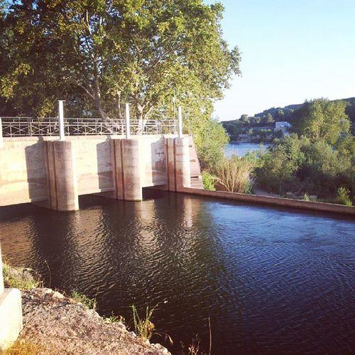 Canal L'Assut