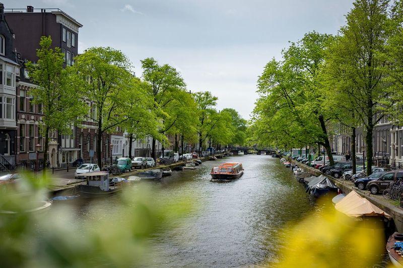 Canal joy