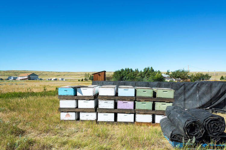 Beehives on grassy field against clear blue sky