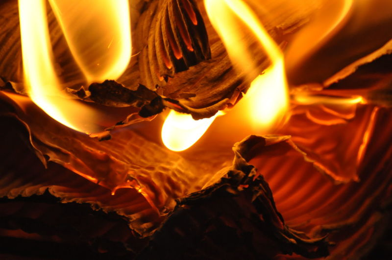Bonfire Burning Burning Carton Burning Paper Close-up Flame Heat - Temperature Illuminated Indoors  Motion Night No People Yellow