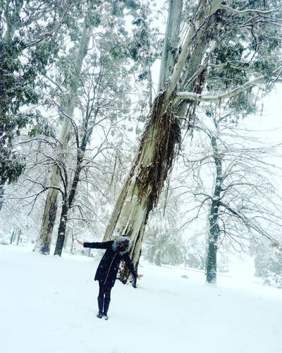 заснежило Water Tree Day No People Nature Cold Temperature Outdoors Animal Themes зима❄️ снег❄