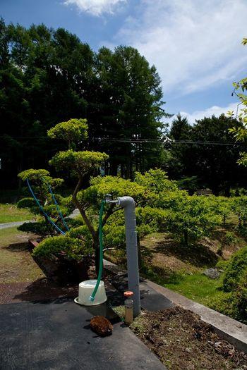 Japan 2011 June Water Hose Washing