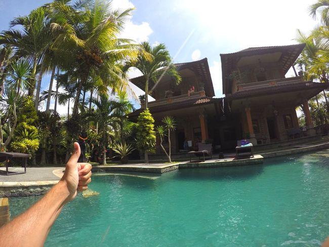 Welcome paradise. Bella's Villas, Ubud Ubud Bali Rice Field Paradise Swimming Pool INDONESIA Hand Happy