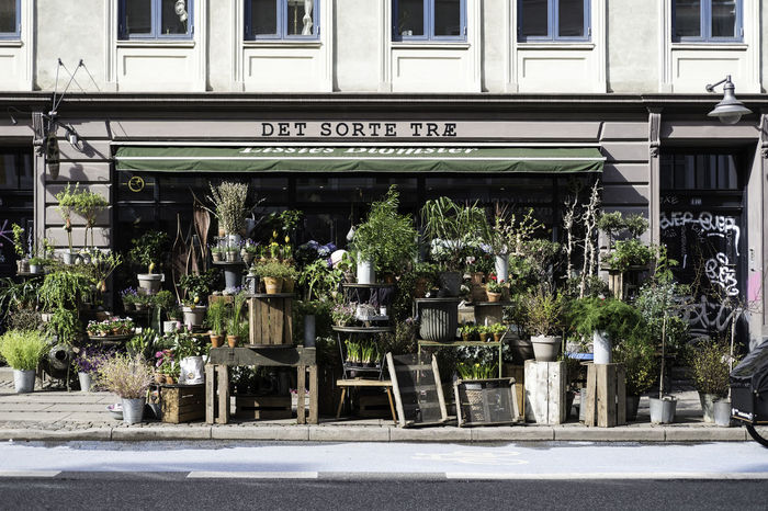Architecture Building Exterior Built Structure Day Flower Flower Shop Growth No People Outdoors Plant Streetphotography Text
