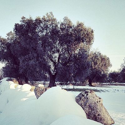 Snow Puglia InMyPlace Friends specialmoments winter instabest instacool bestshot