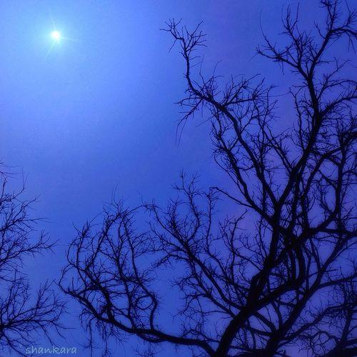 Aura moon