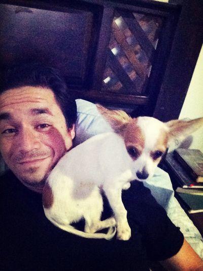My Dog Cute Dog  Selfie My dog Popeye getting comfortable