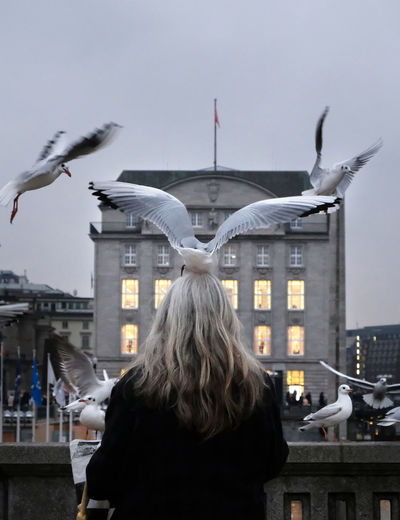Rear view of woman with seagulls against sky in city