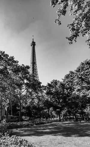Mistic Paris Eiffel Tower Paris EyeEm Best Shots Photography Bestoftheday Architecture Built Structure Plant Sky Tower Low Angle View Tree Travel Destinations Nature City Building