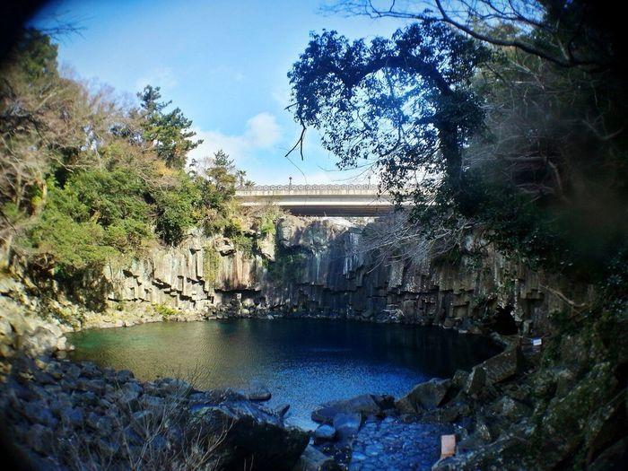 JEJU ISLAND  Jejuisland Beautiful Nature Travel Cheonjeyeon Waterfall Korea Relaxing Taking Photos
