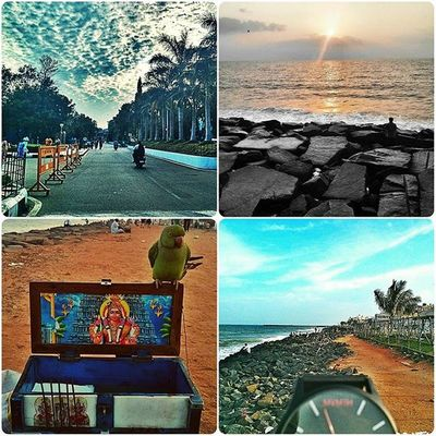 Pondy days.. Jipmer Pondy Rocky French Mvmt Mvmtwatches Watchporn Watchfreak Watchfortheday Parrot Birdlover Birdsofinstagram Beaches Streetphotography Indiaclicks _oye _soi Storiesofindia F4F Follow4follow Daily Nexus4 Nostalgic  Bnw