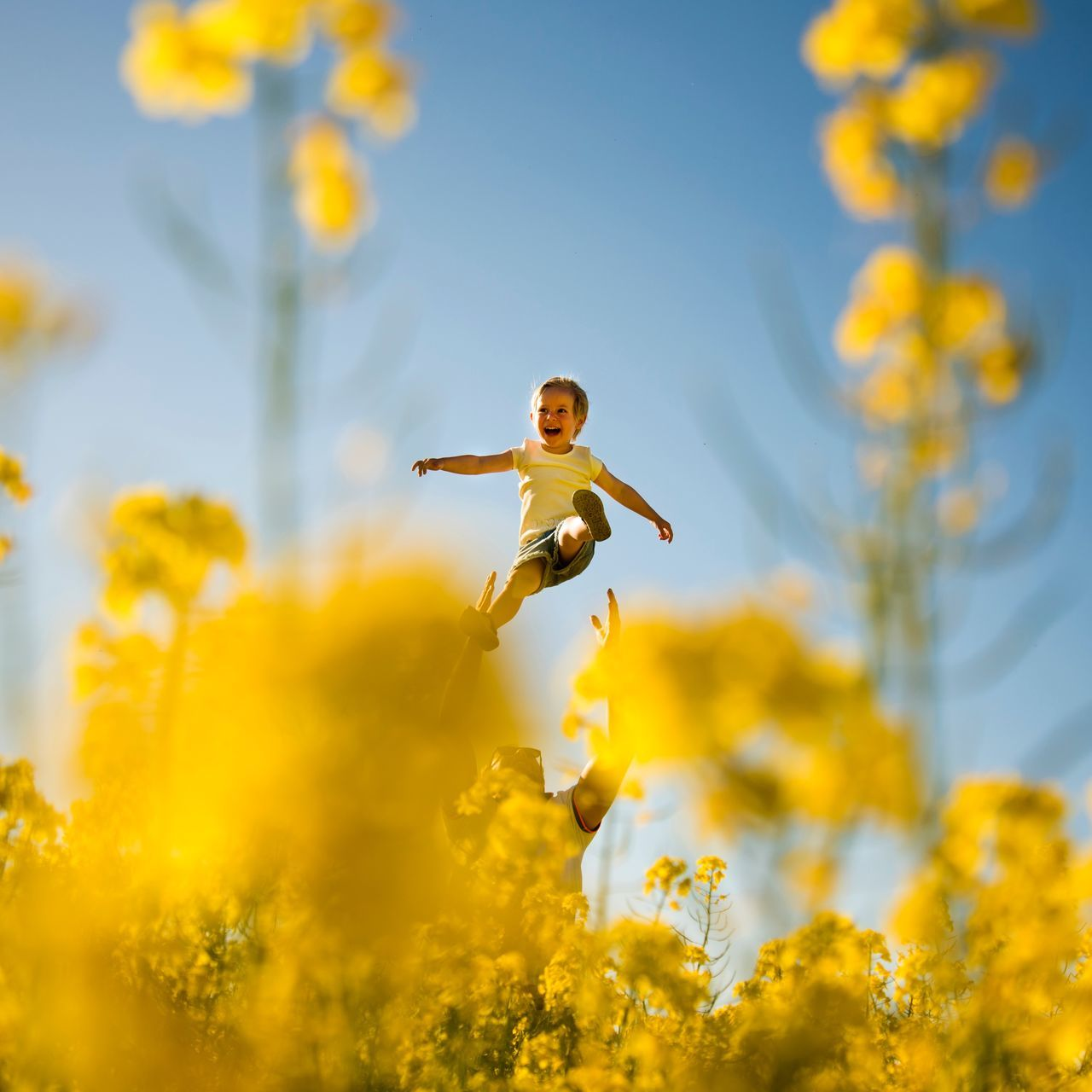 Low angle view of father holding son amidst yellow flowering plant against sky