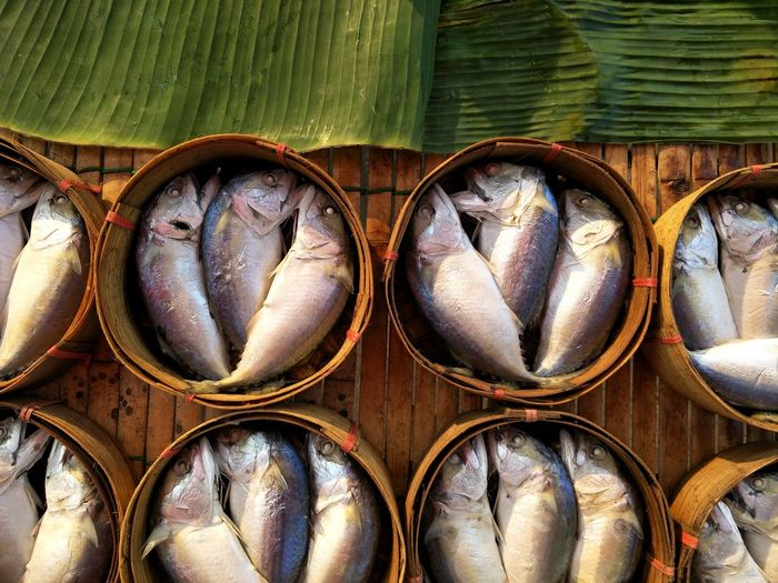 High angle view of fish in baskets