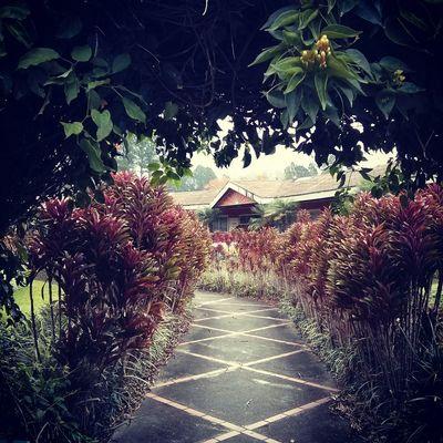 Feelingfree Welcome To  The Garden Garden Photography Garden Secret Garden