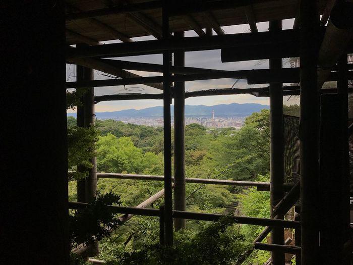 Kyoto 🇯🇵