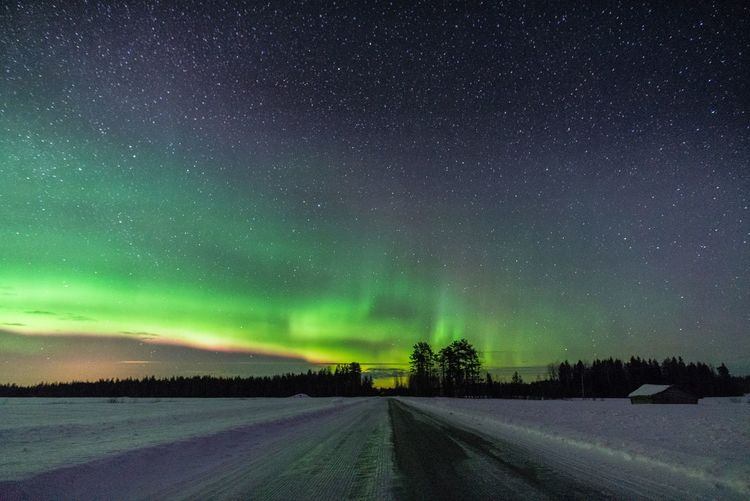 Road to north Night Beauty In Nature Sky Astronomy Star - Space Tranquil Scene Snow Tranquility Winter No People Road Direction The Way Forward Nature Clear Sky Green Color Landscape Northern Lights Aurora Borealis Barn Beautiful Photography Travel Outdoors Freshness
