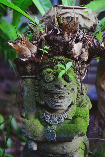 Close-up of statue by potted plants