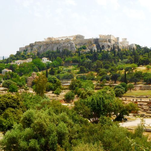Acropoli di Atene Atene Grecia Greek Travelling Architecture Athens Beauty In Nature Cultures Day Green Color Land Landscape Mountain Nature Outdoors Photo Travel Plant Rock Scenics - Nature Sky Tranquil Scene Travel Couple Travel Destinations Tree