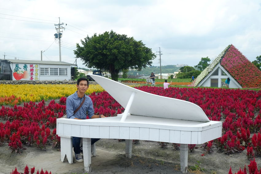 Piano Moments People Day Travel Destinations EyeEm Gallery EyeEm Masterclass EyeEmNewHere EyeEm Best Shots Eyeem On Week EyeEm Indonesia EyeEmBestPics Flower