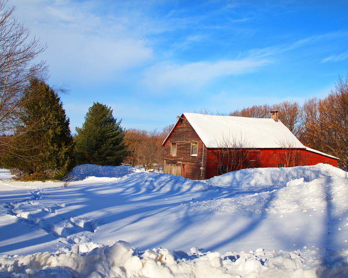 Barn in a field in Saint-Paul-d'Abbotsford, Quebec, Canada Barn Barns Morning Morning Light Morning Sky Red Snow ❄ Winter Building Exterior Built Structure Day No People Non-urban Scene Sky Snow Tranquility Shades Of Winter