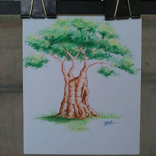 Tergantung mood.. Hehe Tree Sketch Pencil Colorpencil Nature Malas Iseng Art Mood Drawing Natural
