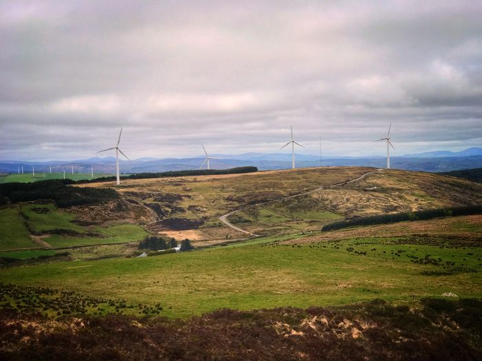 Still day on the wind farm Alternative Energy Wind Power Wind Turbine Environmental Conservation Renewable Energy Windmill Fuel And Power Generation Landscape Field Sky Industrial Windmill No People Nature Outdoors Day Beauty In Nature Rural Scene Cloud - Sky Grass Tranquil Scene Investing In Quality Of Life