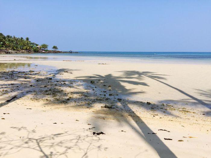 Koh Kood Coconut Tree Beach Thailand Shadow Sunshades