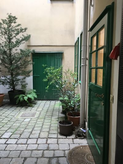 Building Exterior Architecture Built Structure Plant Building House Door Entrance Growth Window Nature No People Potted Plant Outdoors Day Footpath City Residential District Glass - Material Street Houseplant Flower Pot
