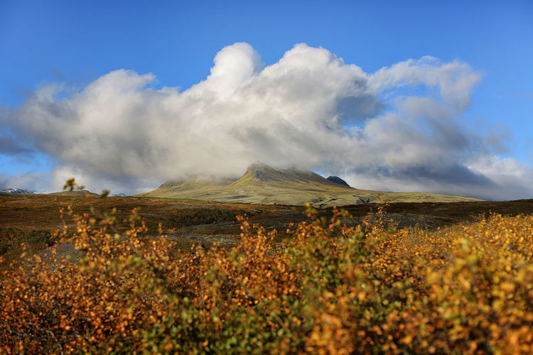 Scenic view of skaftafell national park against cloudy sky
