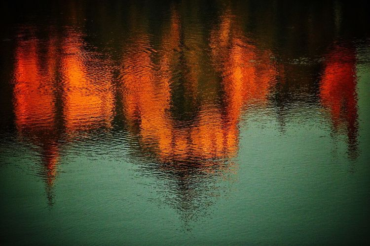 Close-up of reflection in lake