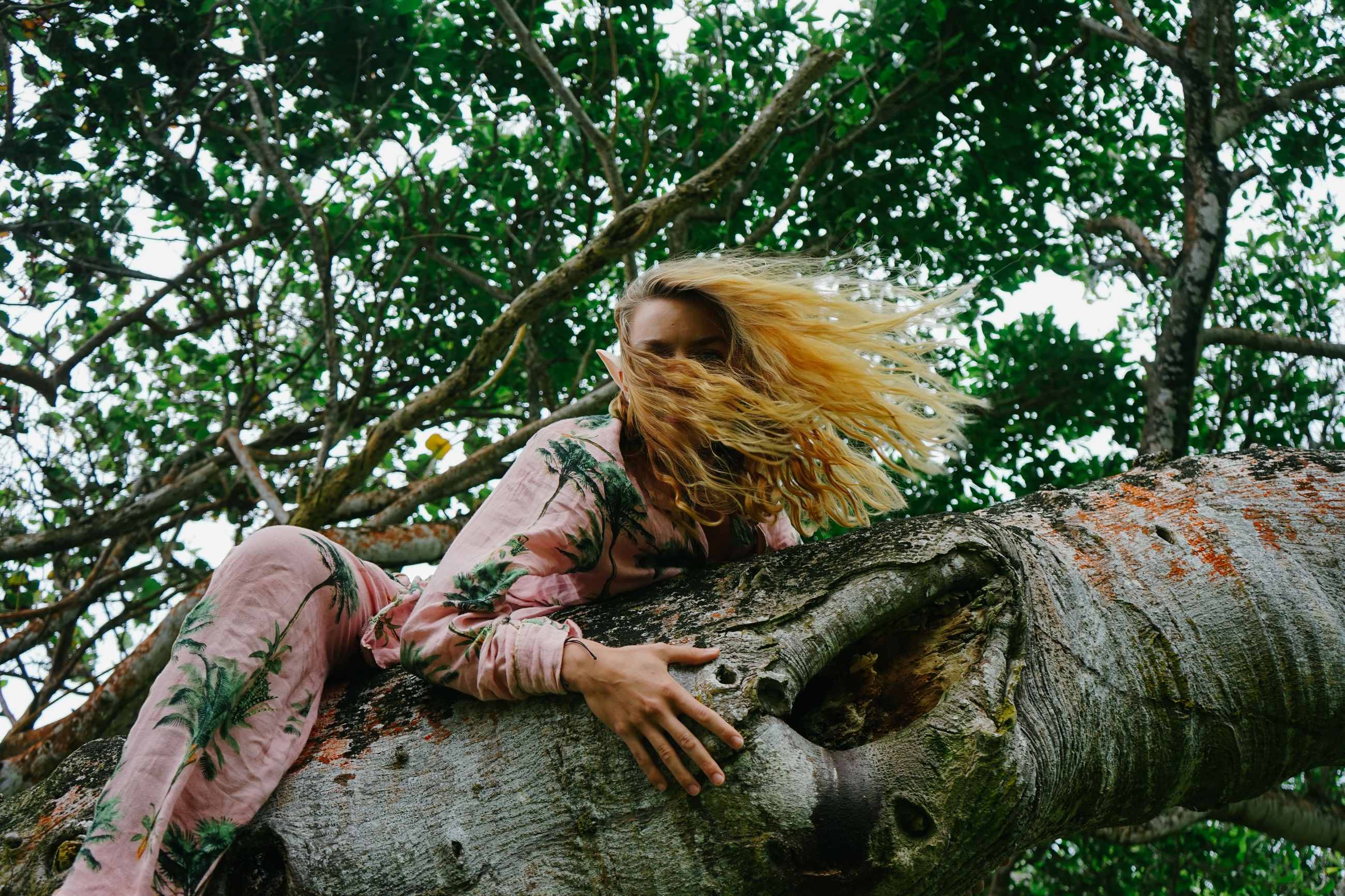 tree, plant, one person, forest, leisure activity, women, nature, adult, long hair, jungle, hairstyle, blond hair, lifestyles, young adult, casual clothing, day, flower, relaxation, outdoors, sitting, green, sunlight, natural environment, land, full length, person, spring, woodland, rainforest, growth, leaf, autumn, lying down, tree trunk, three quarter length, female, branch