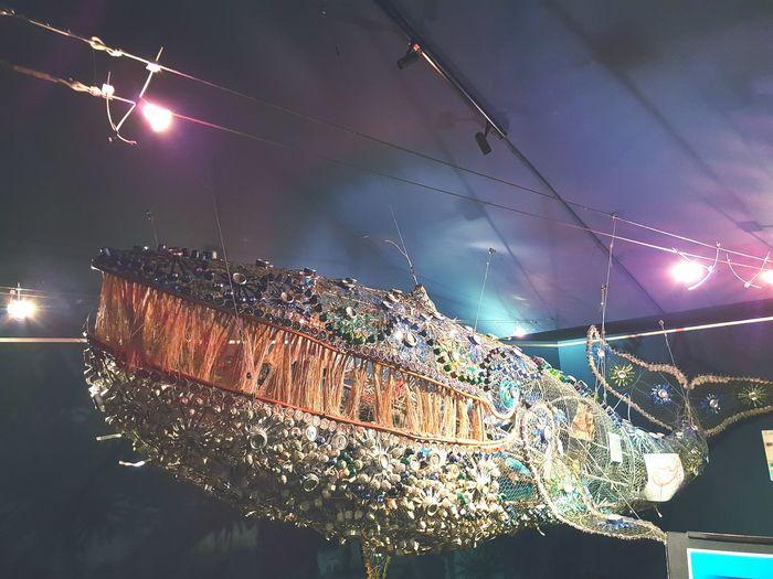 Aquarium La Réunion  Recycling Recyclage Sculpture Whale France