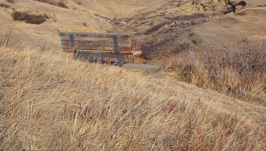 EyeEm Best Shots Prairie Scenes Welcomeweekly Alberta Canada Eyemphotography Looking To The Other Side Landscape_photography Dry Grass Bench Hillside Coulees