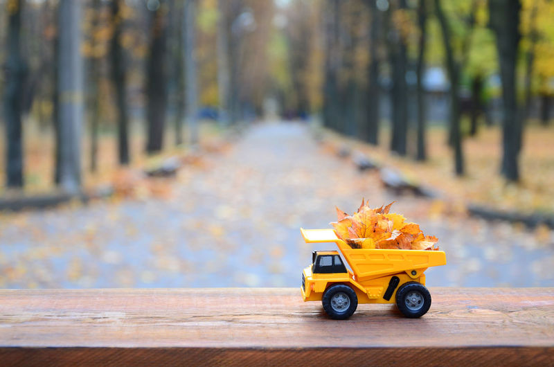 Toy car on table by road during autumn