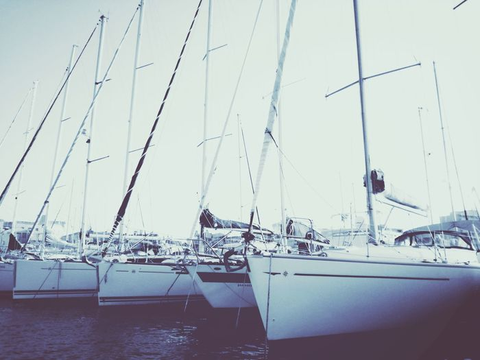 Sailboats moored on harbor against sky