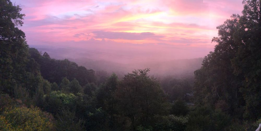 Panoramic Sunrise in thevSmokies Sunrise Beauty In Nature Tree Plant Sky Tranquility Tranquil Scene Scenics - Nature Cloud - Sky Growth Nature Idyllic No People Pink Color Non-urban Scene Orange Color Environment Outdoors Landscape Purple