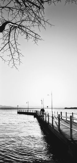 Sea Clear Sky Water Idyllic Outdoors Sky Tranquil Scene Nature Tranquility Horizon Over Water Beauty In Nature Branch Day Tree Beach No People Trasimenolake