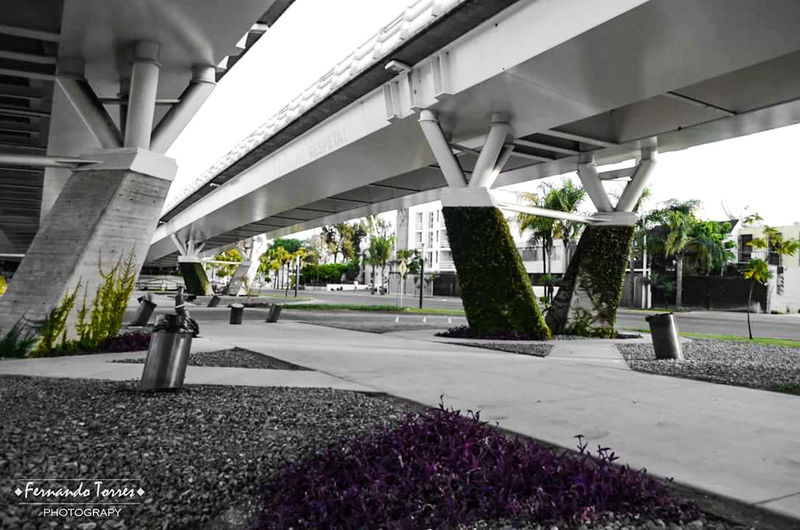 Architecture Bridge - Man Made Structure Architecture Built Structure Road Modern Street City Connection Puente Matute Remus Transportation Architectural Column Lifestyles No People Building Exterior Outdoors Day Cityscape PuenteAtirantado EyeEmNewHere