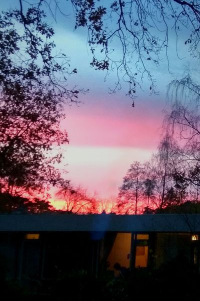 Today's sunset color, photoed without any special filter. Sunset Outdoors Nature Dailylife