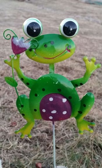 Fall Country Life Missouri Ozarks United States Cute Frog Yard Ornament Anthropomorphic Face Green Color No People Close-up Day