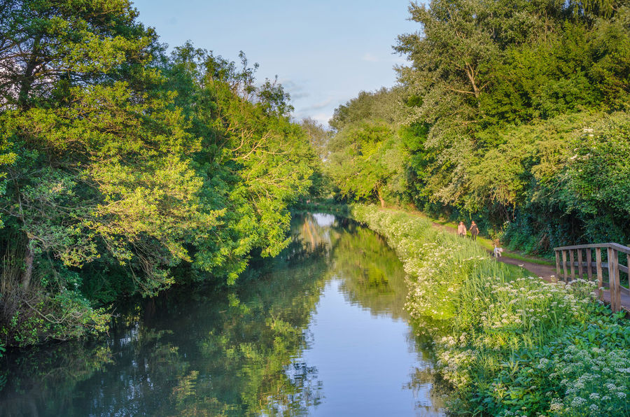 The River Kemnet near Reading on Berkshire. Architecture Autumn Beauty In Nature Bridge - Man Made Structure Countryside Day Footbridge Green Color Greenery Growth Landscape Nature No People Outdoors Reflection River River Kennet Riverscape Scenics Sky Tranquil Scene Tree Trees Water Waterway