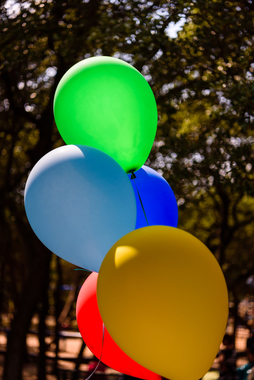 balloon, multi colored, green color, tree, yellow, low angle view, no people, helium balloon, nature, focus on foreground, plant, day, outdoors, blue, celebration, sky, close-up, sunlight, shape, pink color