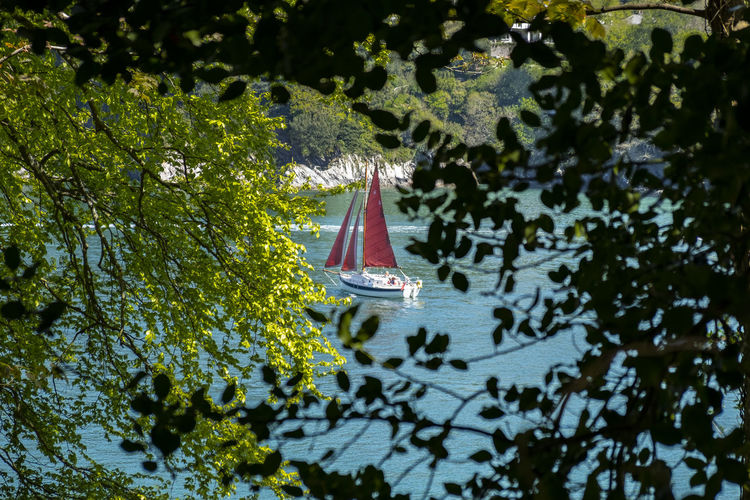 High angle view of sailboat sailing on lake