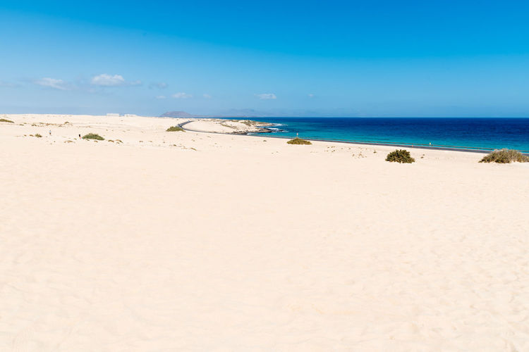 Sand dunes in the beach of Corralejo in Fuerteventura Canary Islands Fuerteventura SPAIN Arid Climate Beach Beauty In Nature Blue Corralejo Day Horizon Horizon Over Water Idyllic Land Nature No People Non-urban Scene Outdoors Sand Scenics - Nature Sea Sky Tranquil Scene Tranquility Water
