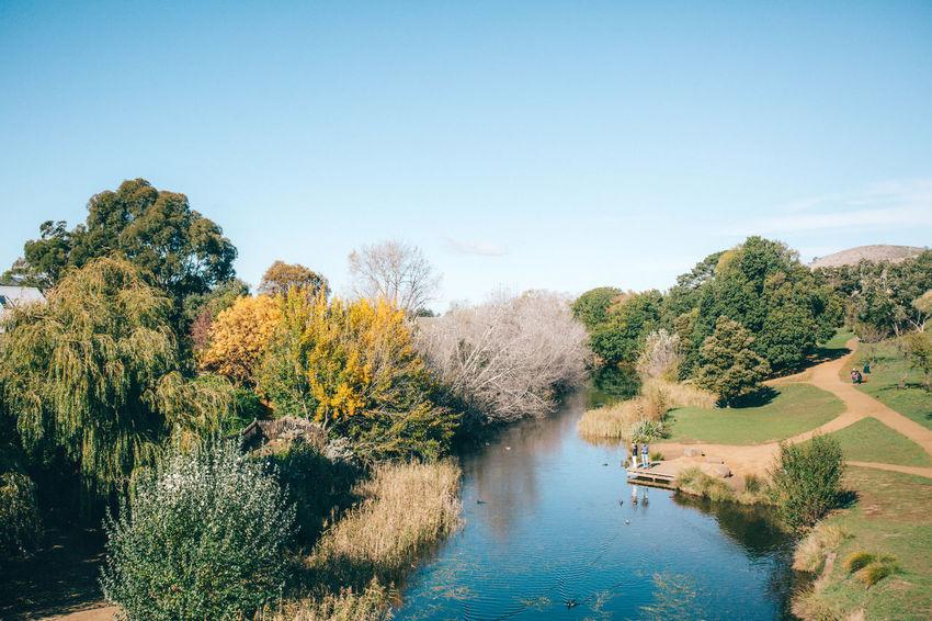 Australia Autumn Autumn Beauty In Nature Nature Richmond River Scenics Tasmania Tranquil Scene Tree Water