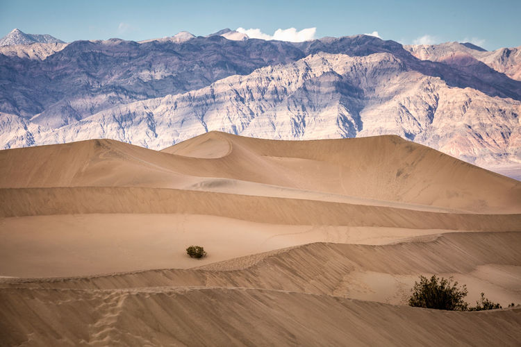 Scenic view of desert against mountains