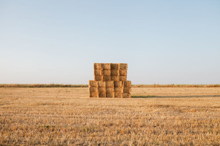 Stack of hay bales on field against clear sky
